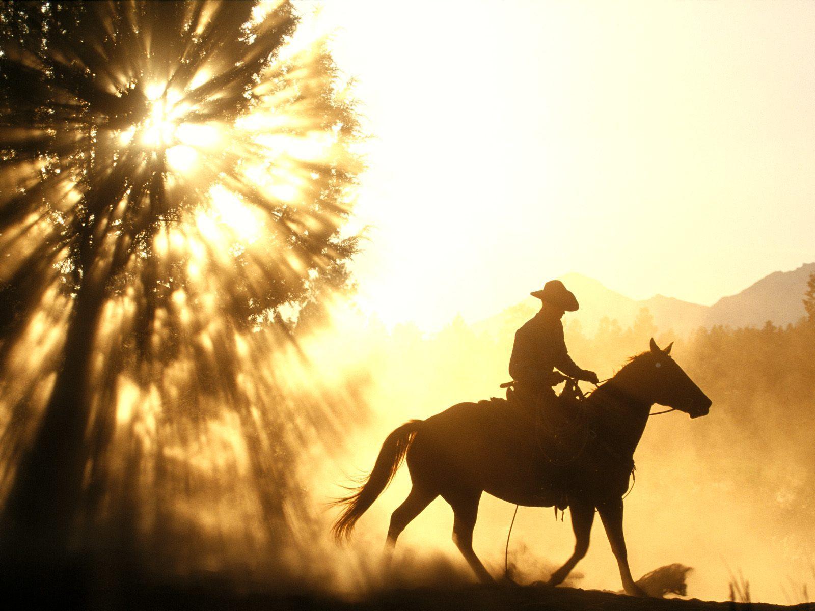 cowboy horse sunset desktop wallpaper download cowboy horse 1600x1200