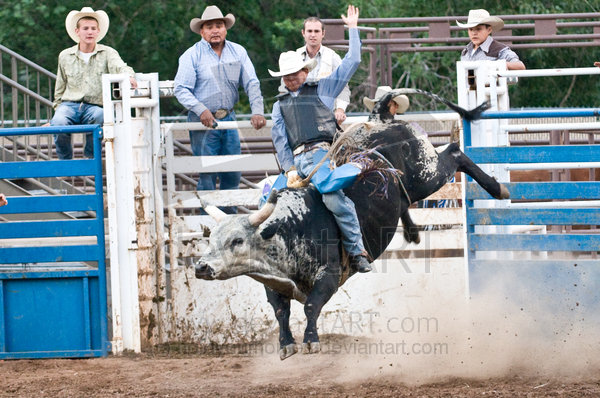For Lane Frost Bull Riding Wallpaper HD Walls Find Wallpapers 600x398