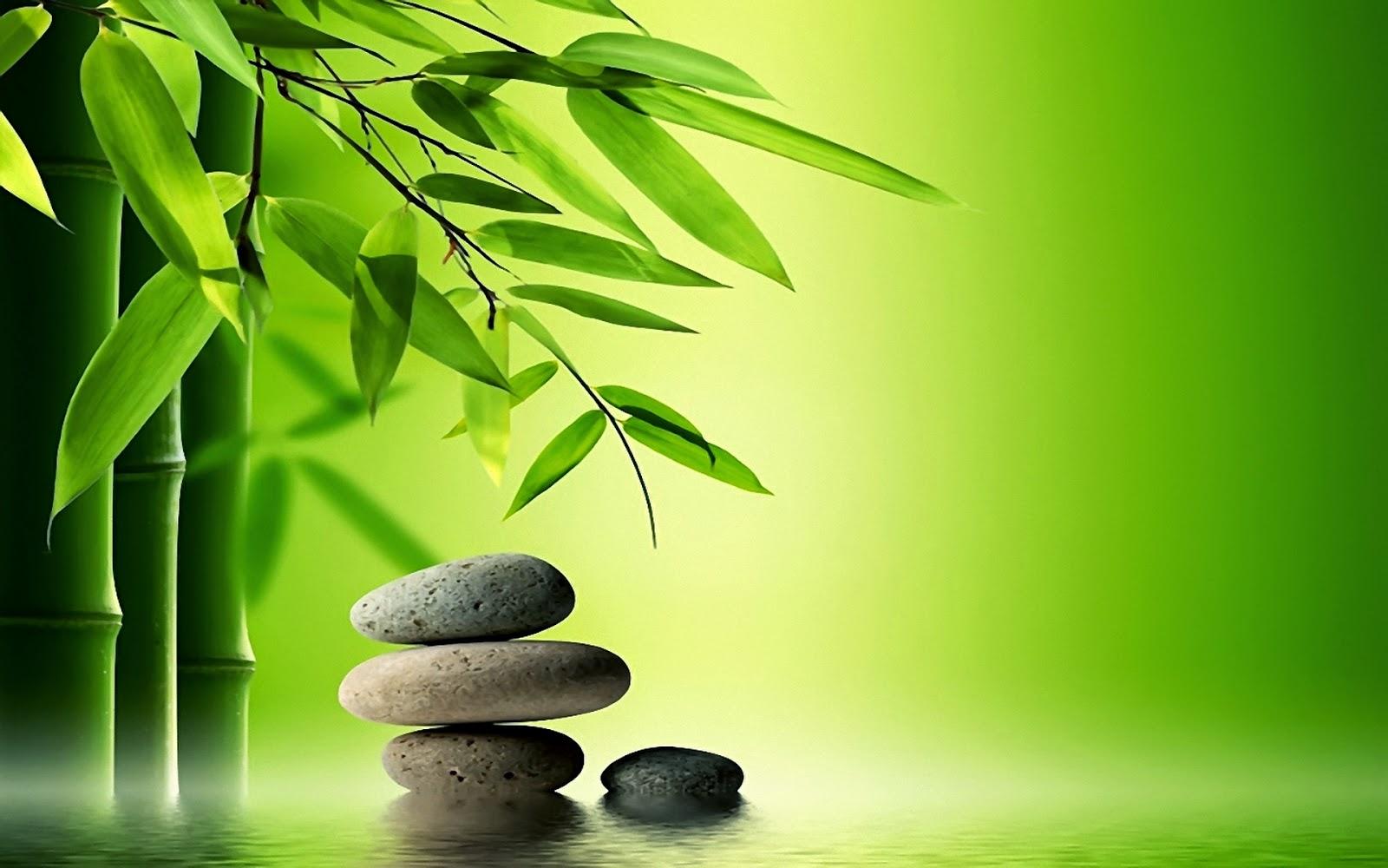 zen garden theme pictures 1080p hd quality download jpg zen 1600x1000