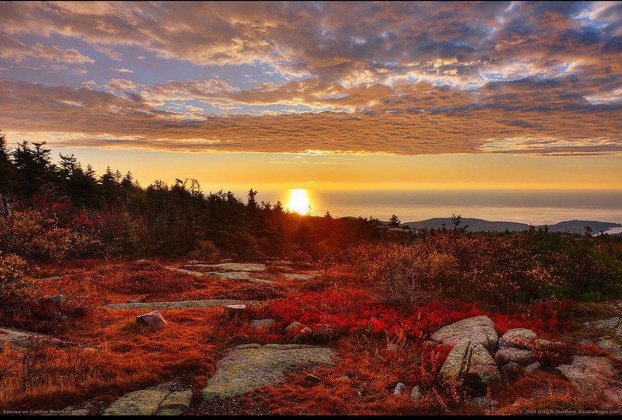 Acadia National Park Maine wallpaper   ForWallpapercom 896x606