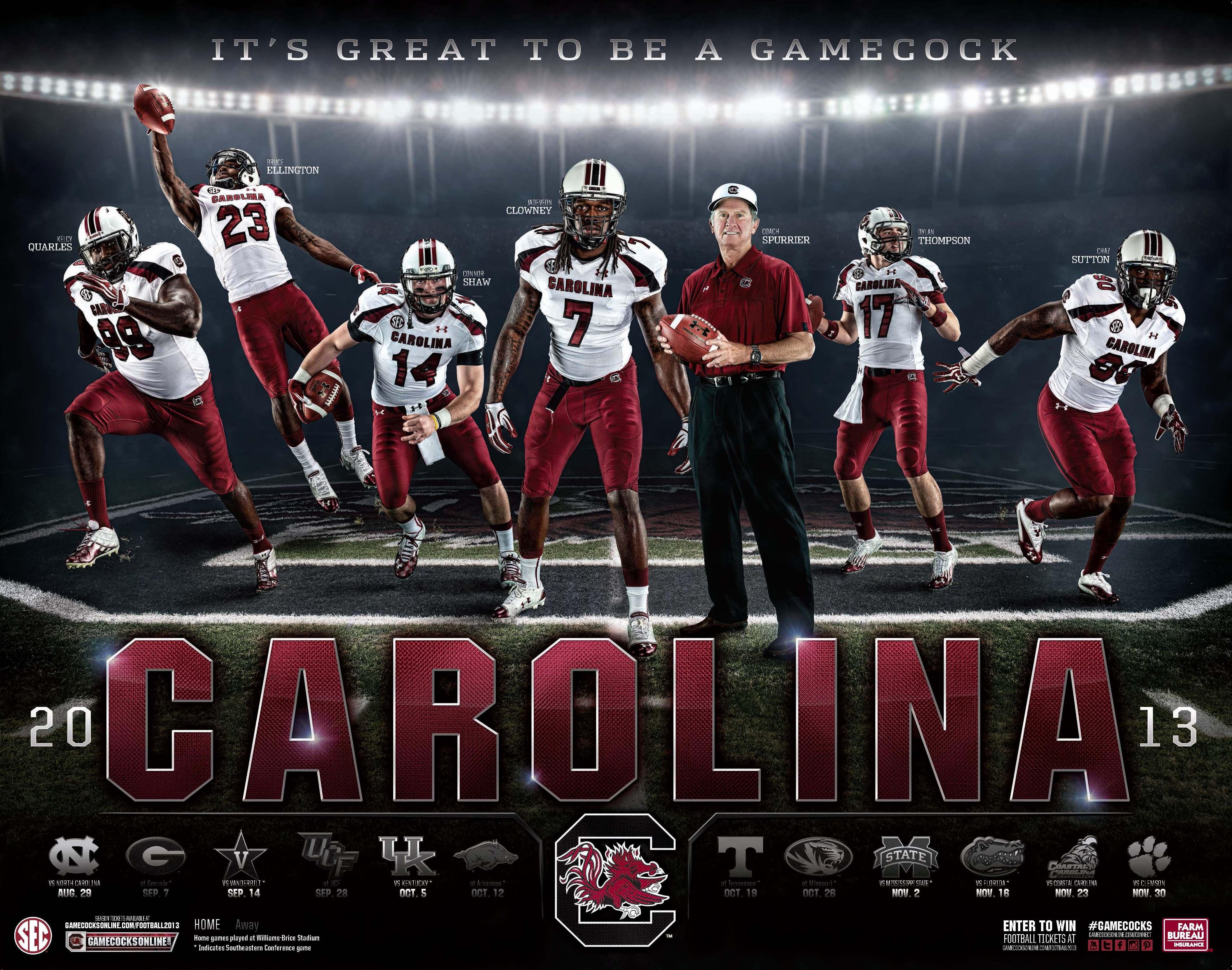 2013 14 South Carolina Desktop Wallpaper 4220x3323