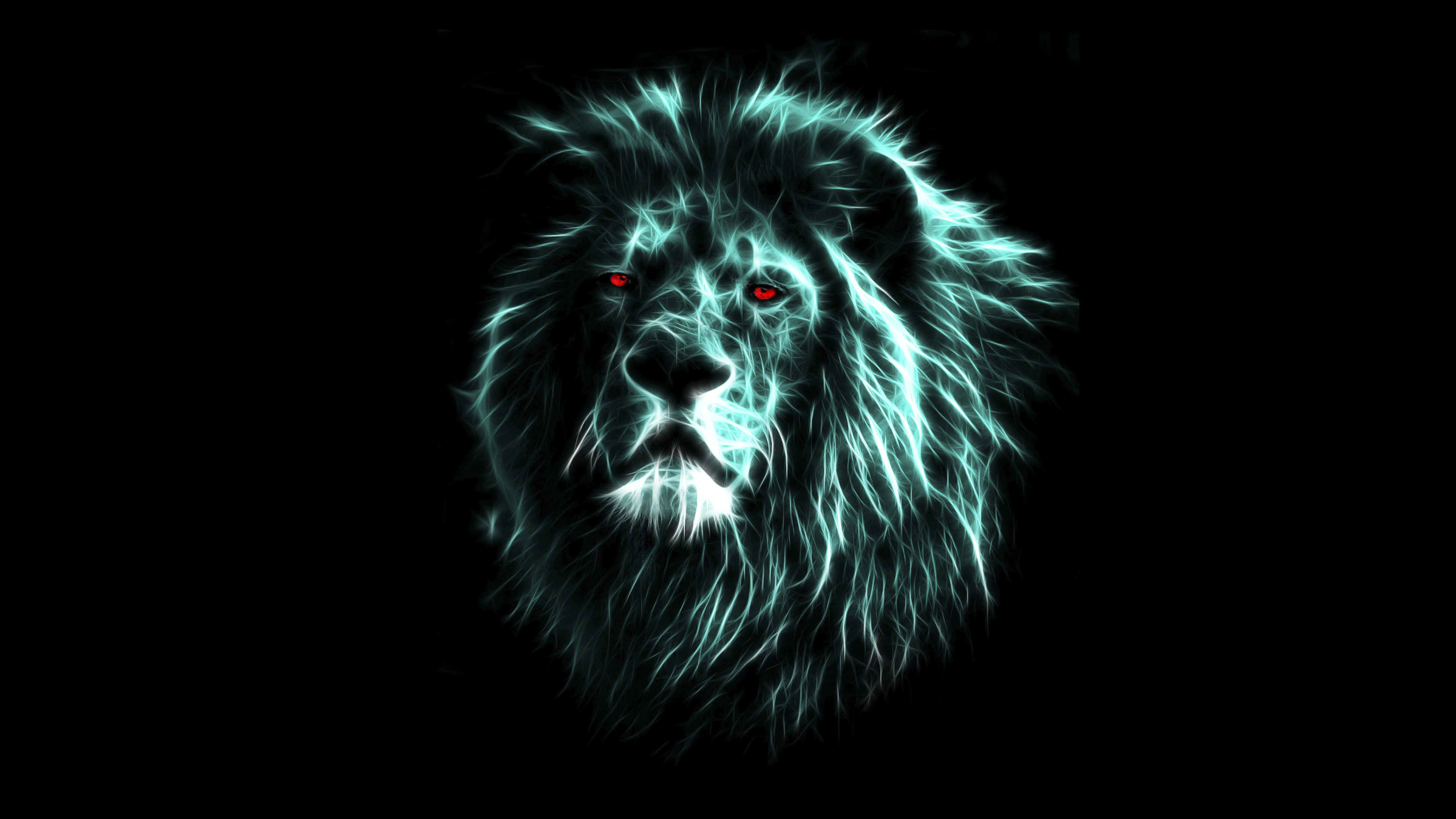 Lion Wallpapers and Background Images   stmednet 3840x2160