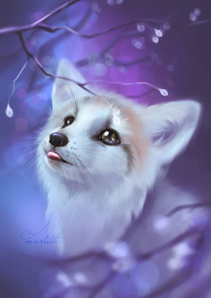 Pin by Jana Poloijov on Foxes and Kitsune Cute animal drawings 679x960