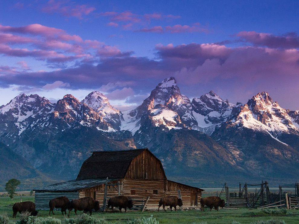 Grand Teton National Park Wyoming   National Geographic Travel Daily 990x742
