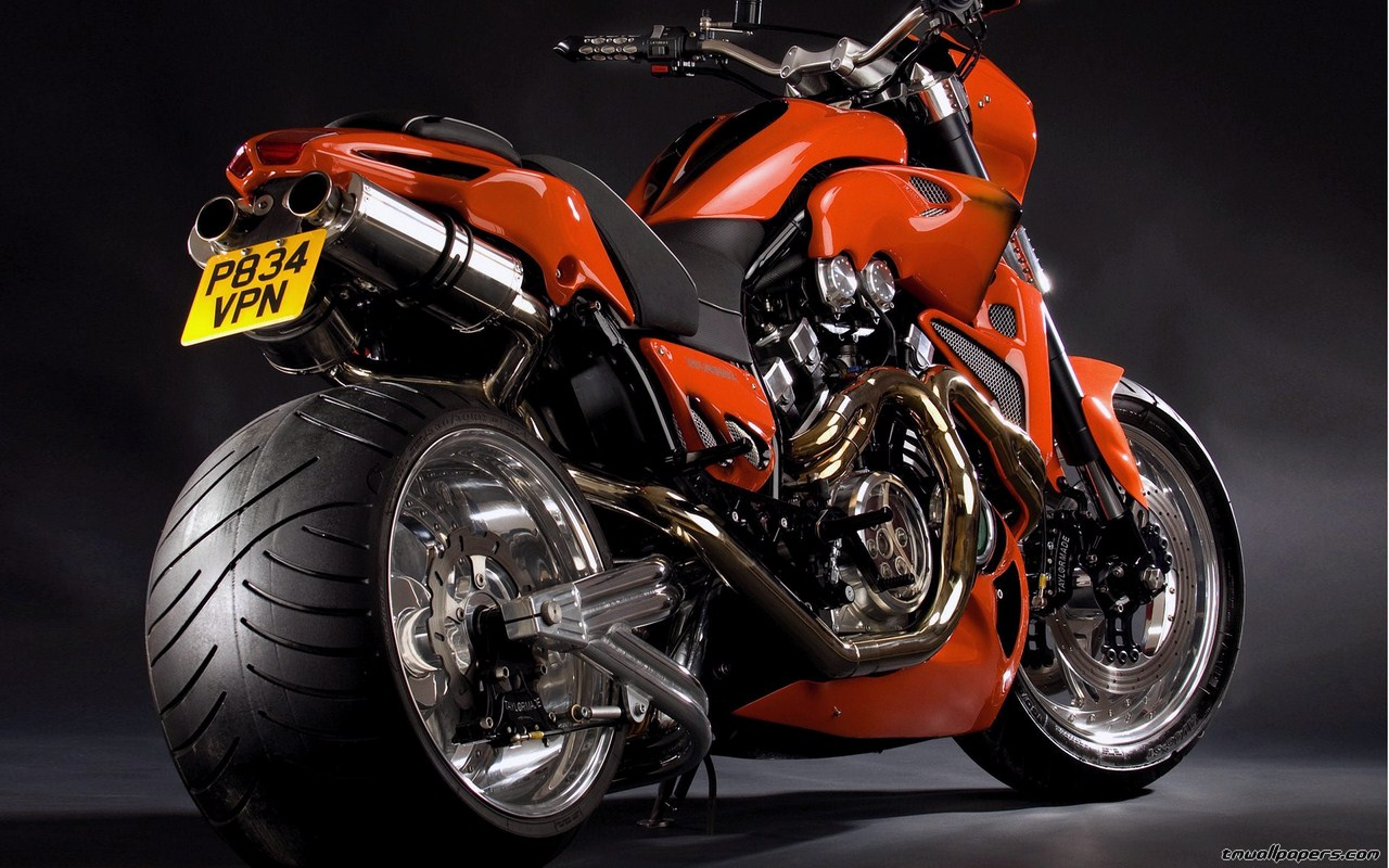 TMWallpapers Wide wallpapers e HD wallpapers   Harley Davidson 1280x800