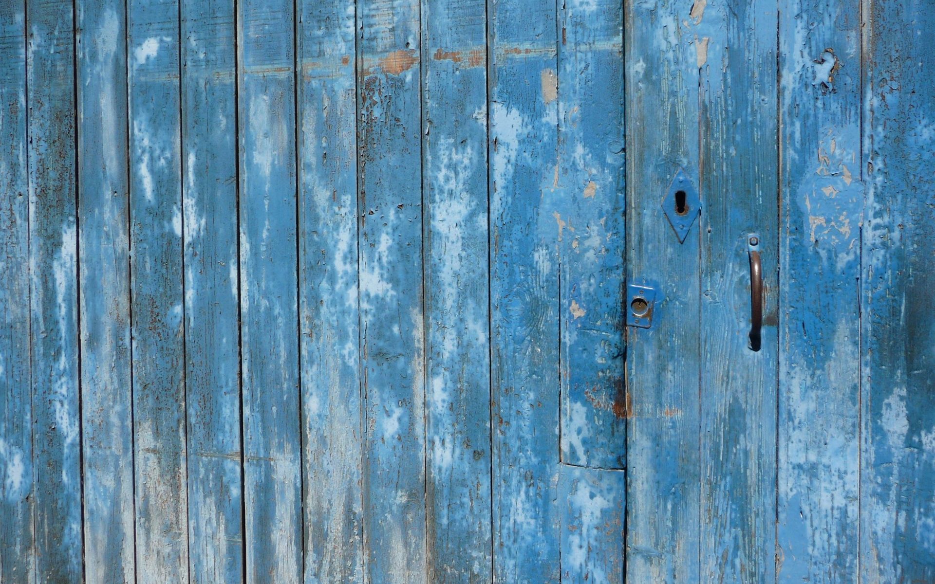 Blue Wood Wallpaper on Painted Floor Pattern
