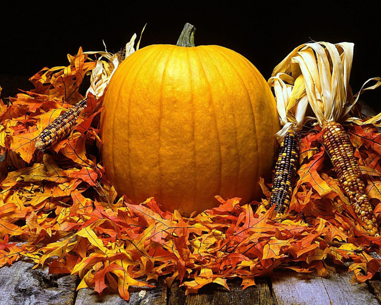 43+ Fall Wallpaper Backgrounds with Pumpkins on ...