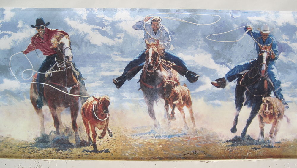 Cowboys Calf Roping Rodeo Western Wallpaper Border 9 Blue eBay 1000x568