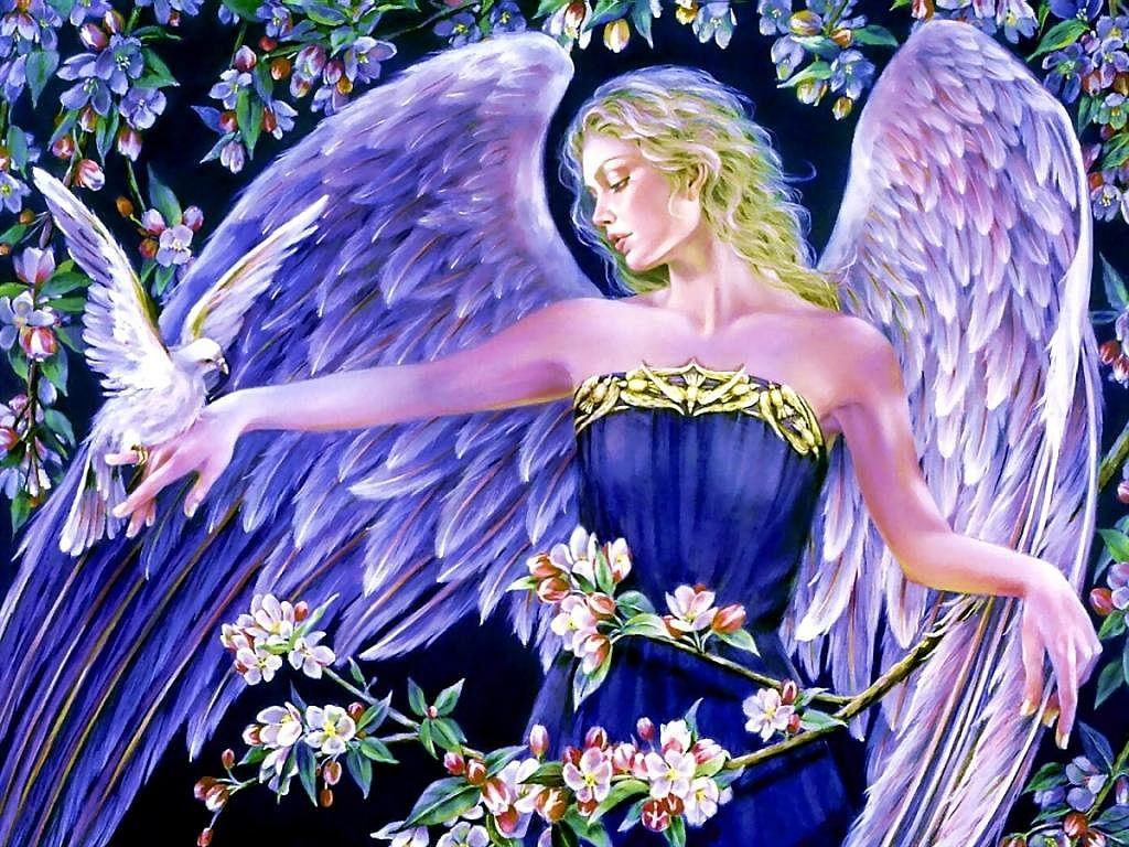 Beautiful Angel Wallpapers Download Wallpaper 1024x768