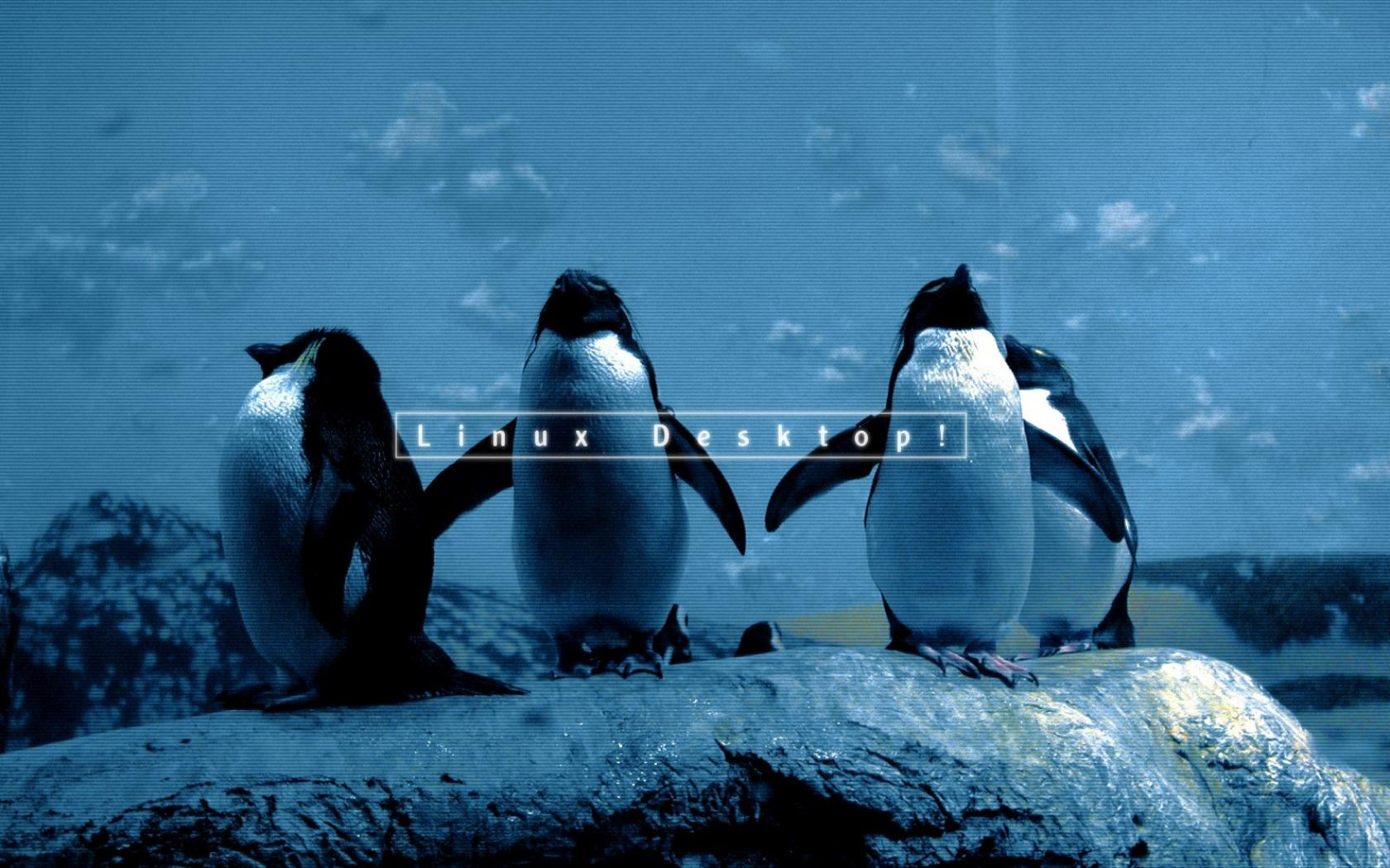Linux wallpaper 1600x1200 HQ WALLPAPER   43611 1680x1050