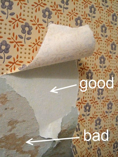 Projects Remove Wallpaper Strips Wallpapers Wallpapers Removal 480x640