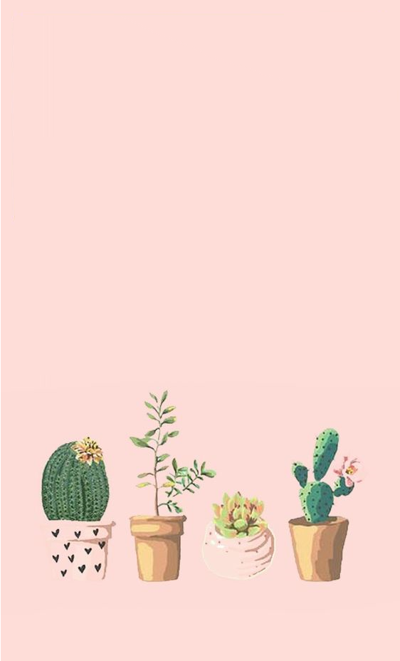 Pastel Aesthetic Wallpaper Cute   562x928   Download HD Wallpaper 562x928