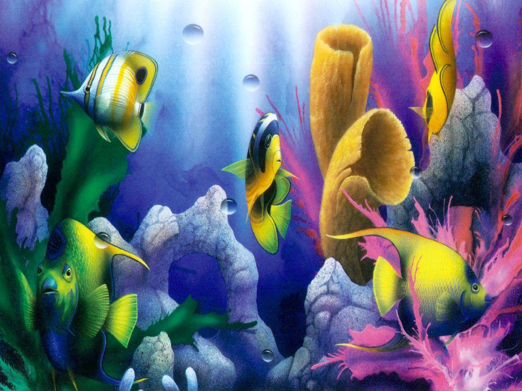 3d desktop aquarium screensaver 1 1 free download