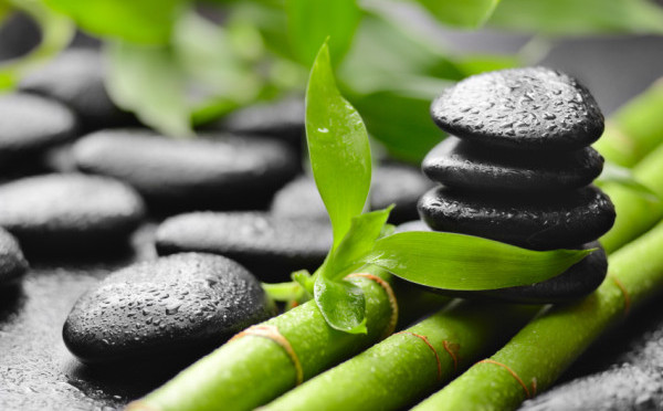 Feng Shui How This Ancient Art Can Help Improve Your Home Staging 600x372