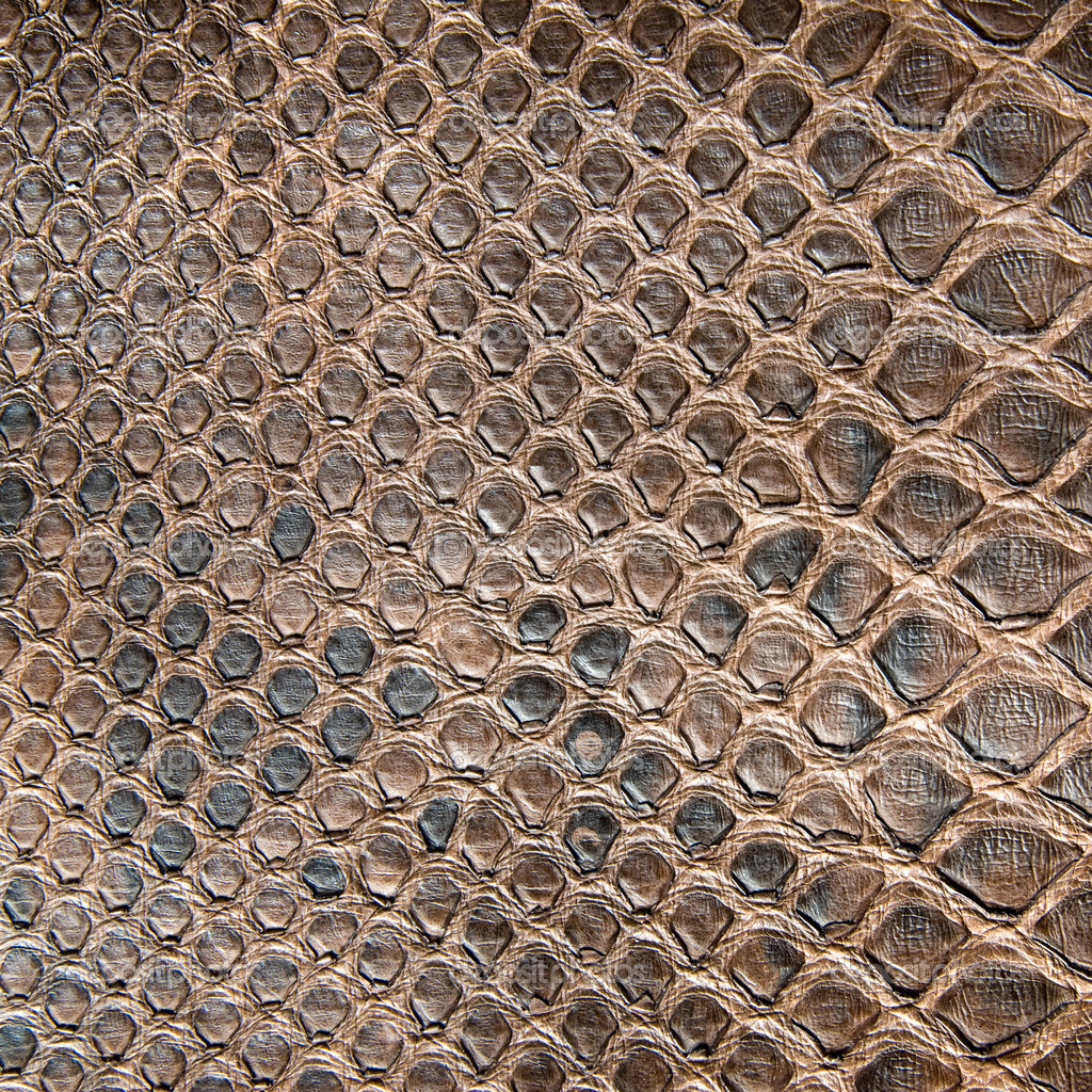 Download Crocodile Skin Seamless Stock Images Hd Wallpaper Pictures 1024x1024