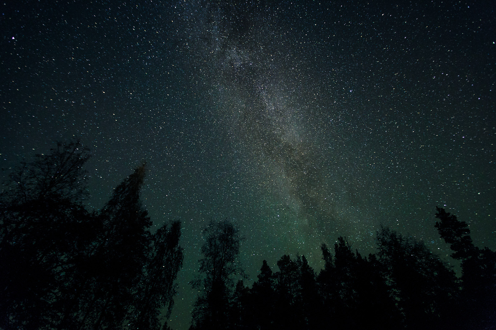 Galaxy Stars Milky Way Night Trees space wallpaper wallpaperupcom 1600x1067