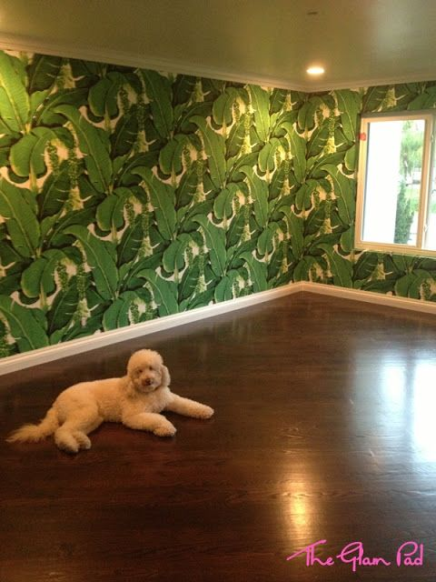 Home   A Brief Update  The Glam Pad Wallpaper paint fabric 480x640