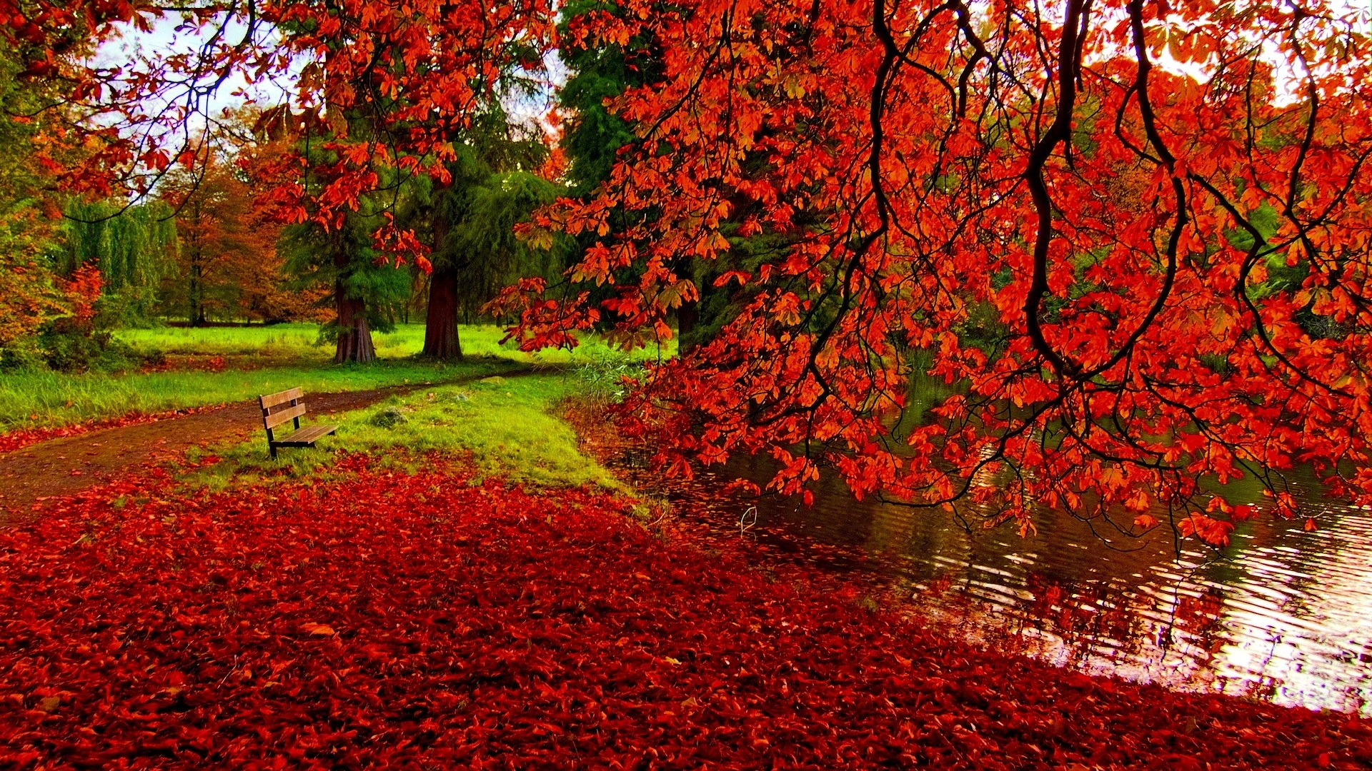 HD Fall Wallpapers make your screen shine brighter 1920x1080