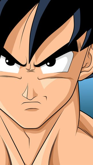 Dragon Ball Z   Goku iPhone Wallpaper 325x576