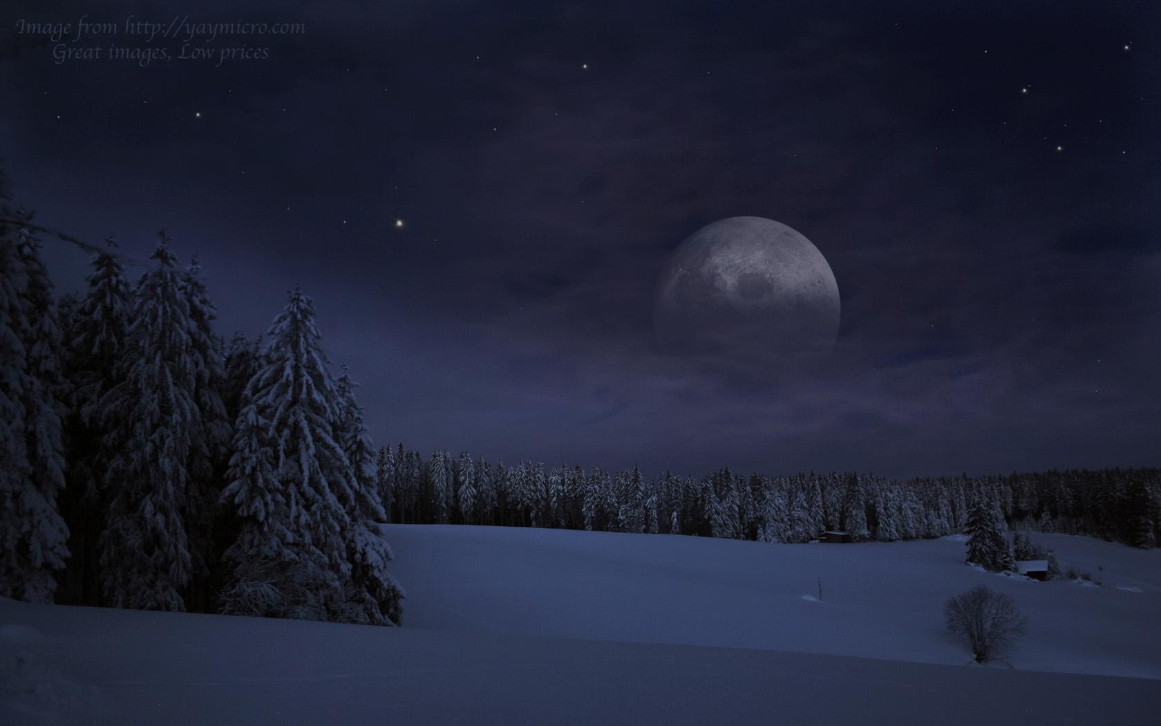 Snowy Night Forest HD Desktop Wallpaper 1680x1050