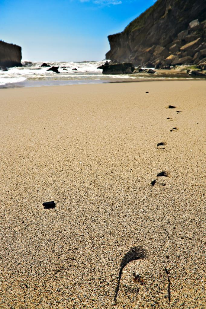 wallpaper background Footprints Scenic Sand Kohaihai Beach West 682x1024