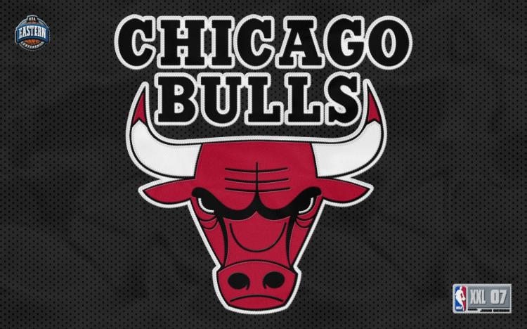 Chicago Bulls Team Logo Wallpapers   56P 750x468