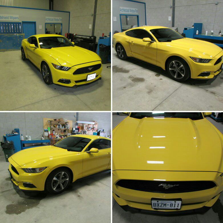Supercharged Mustang Yellow: Yellow 2015 Mustang Wallpaper