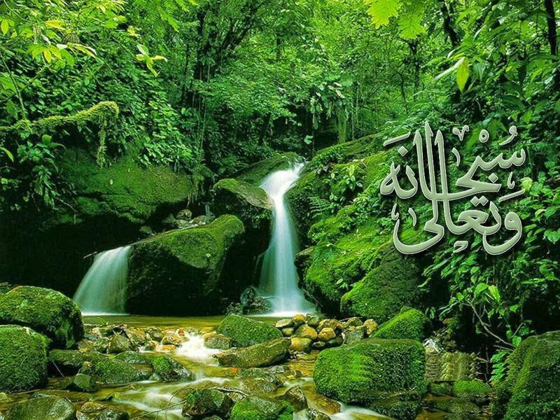 3D Beautiful Islamic Wallpapers Download Hd Wallpapers 2u 800x600