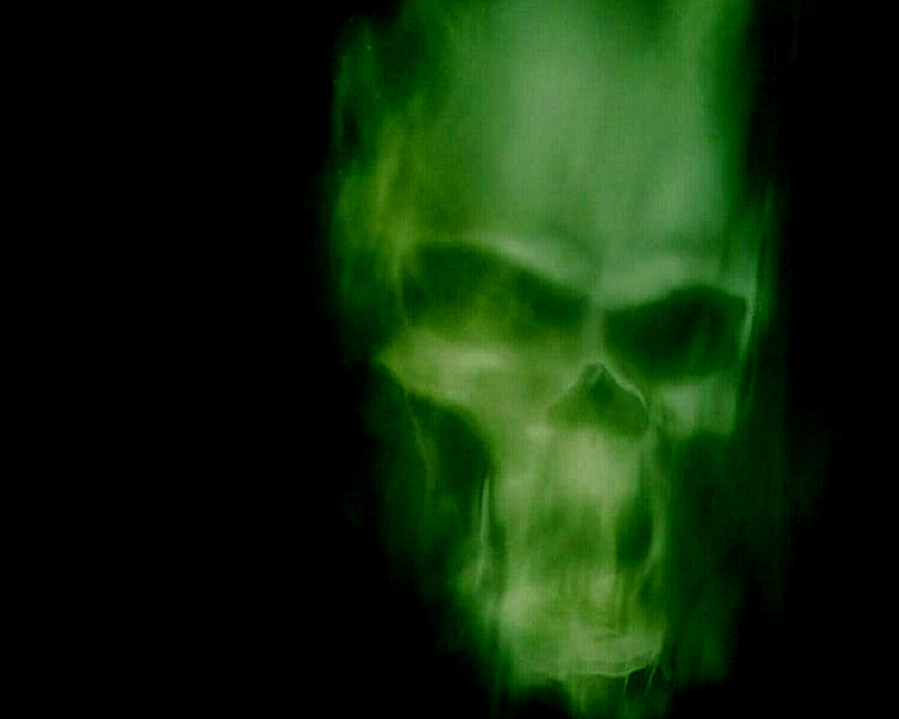 Green Skull Wallpaper   Widescreen HD Wallpapers 1280x1024