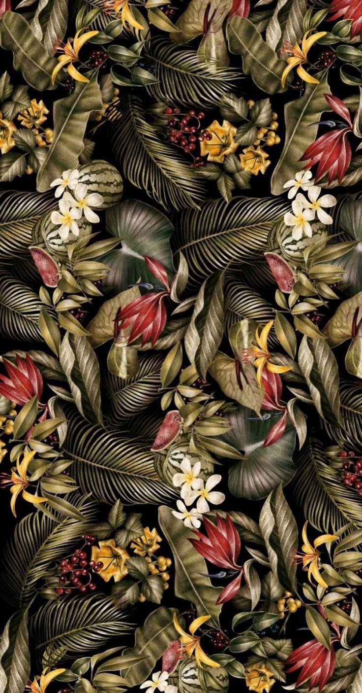 Pinterest Tropical Pattern Pattern Wallpaper and Wallpaper Patterns 736x1406
