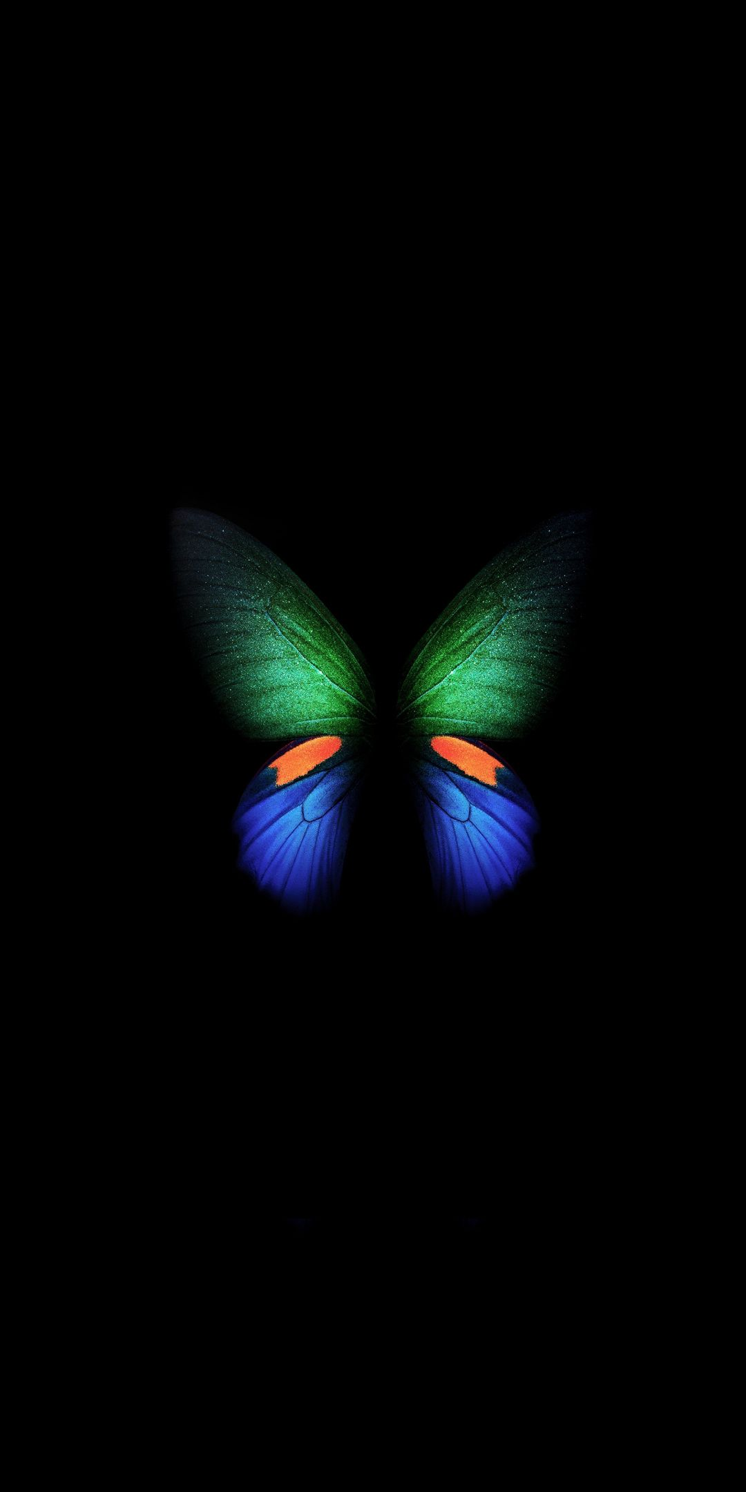 Samsung Galaxy Fold green blue butterfly minimal art 1080x2160 1080x2160