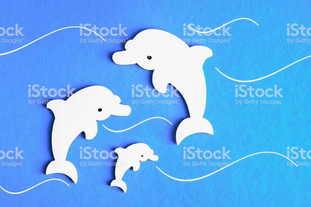 Family Of Dolphins On A Blue Background Stock Illustration 1024x682
