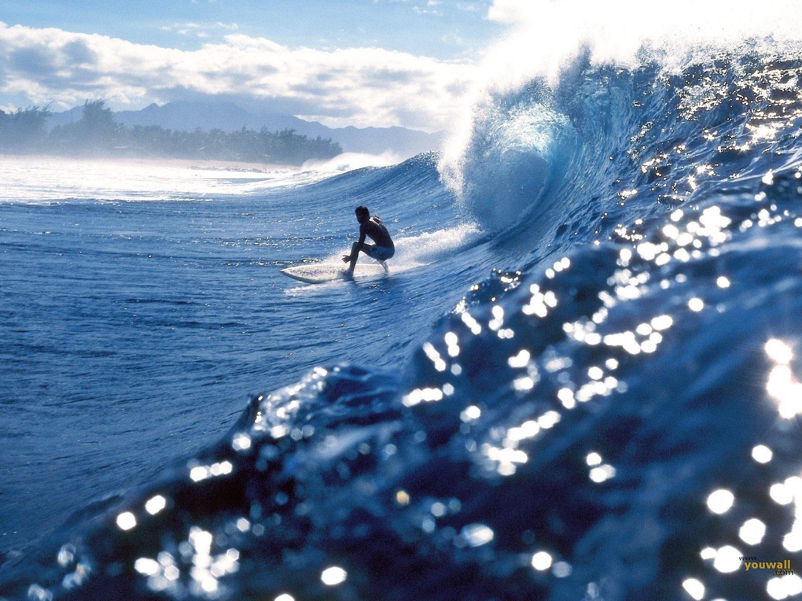 ... Surfing Wallpaper hd backgrounds and make this wallpaper for your
