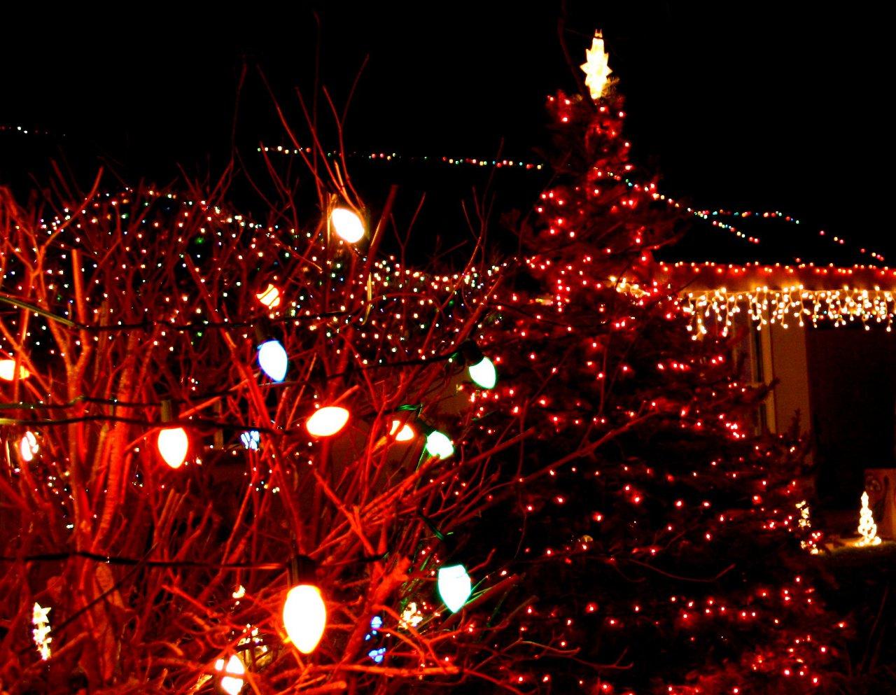 65 Christmas Light Background On Wallpapersafari