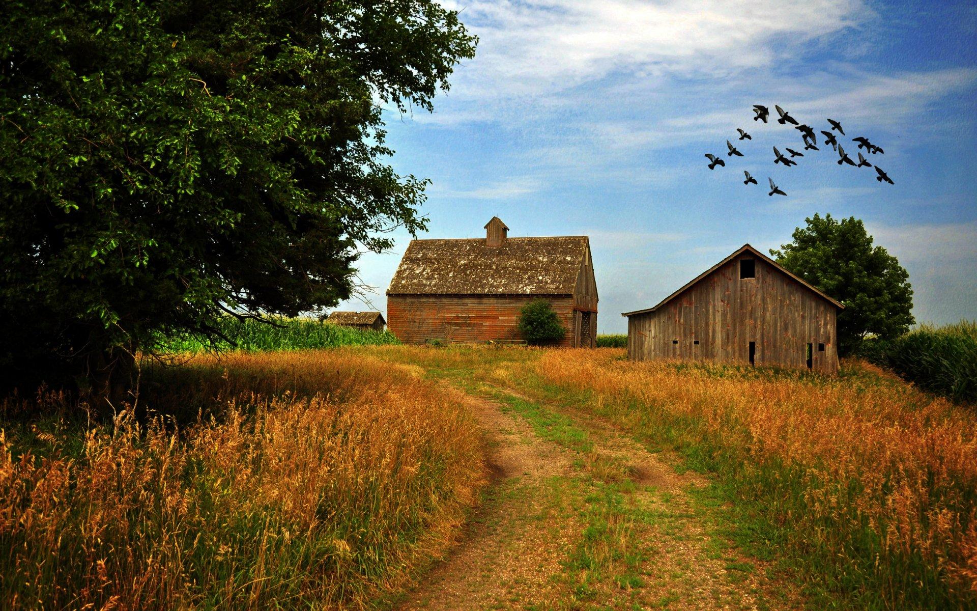Wallpapers Rustic Farm Scenes 1920 X 1080 251 Kb Jpeg HD Wallpapers 1920x1200