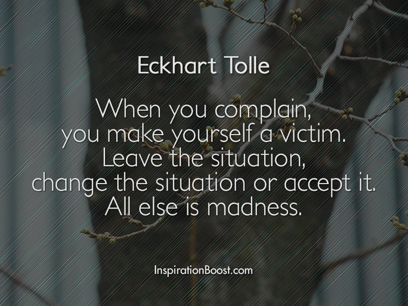 eckhart tolle quotes 800x600