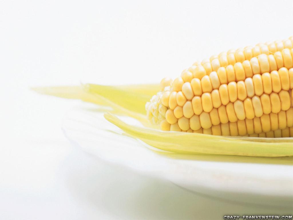 wallpaper corn vegetables resolution wide screen resolution size 321 1024x768