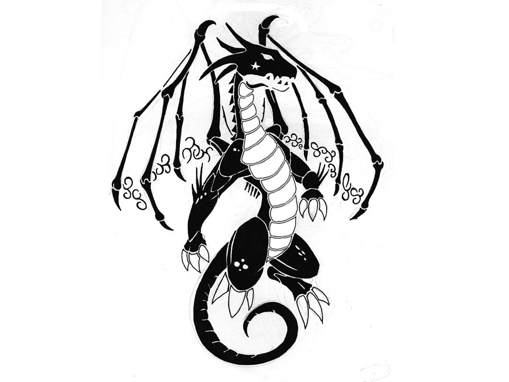 Black And White Dragon Tattoo   Clipartsco 1024x768