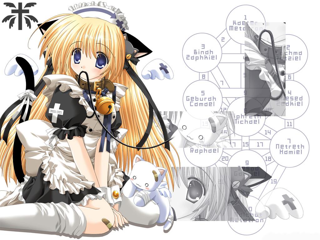 Cat And Master Dog Yaoi
