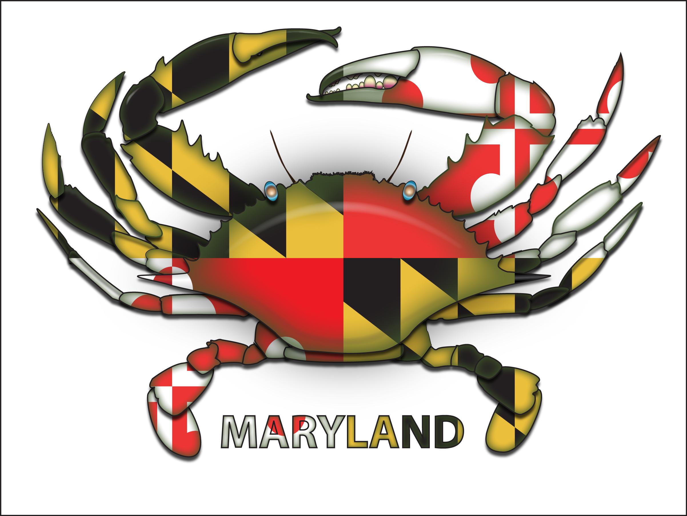 Maryland Flag Design Ladies 2442x1876