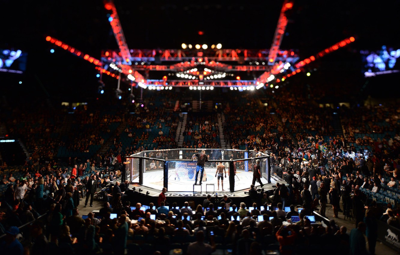 Wallpaper MMA UFC Cage images for desktop section   download 1332x850