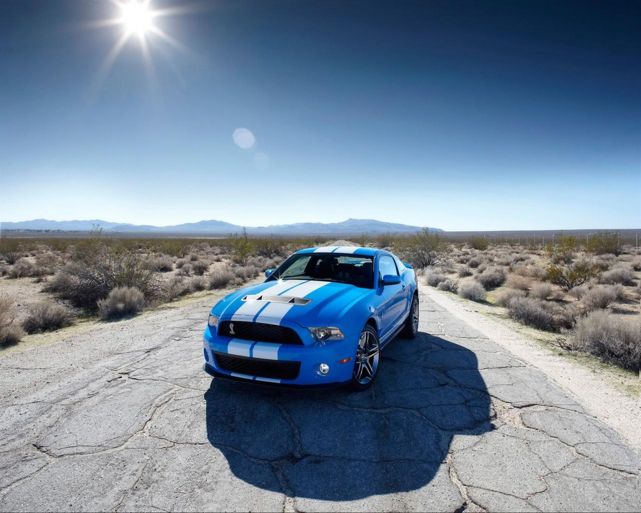 Shelby Mustang GT500 Desktop Wallpaper Background Desktop Wallpaper 1280x1024