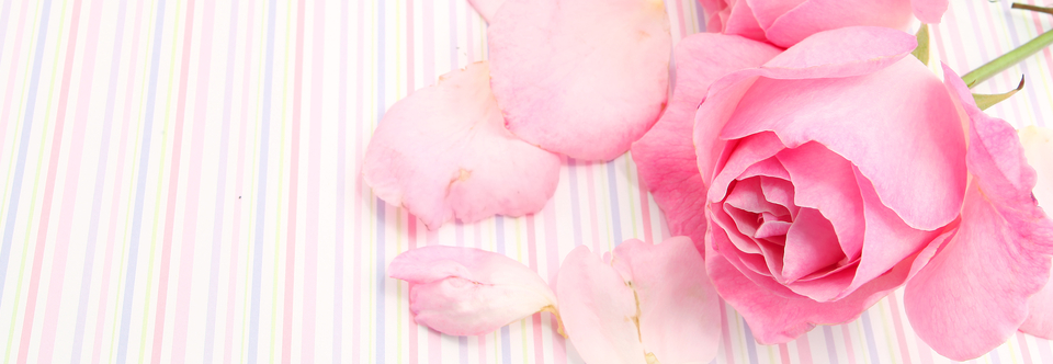 Back Gallery For Alpha Kappa Alpha Pink Tea Rose 960x332