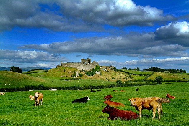 Castle in Ireland Wallpaper Wall Mural   Self Adhesive   Multiple 640x428