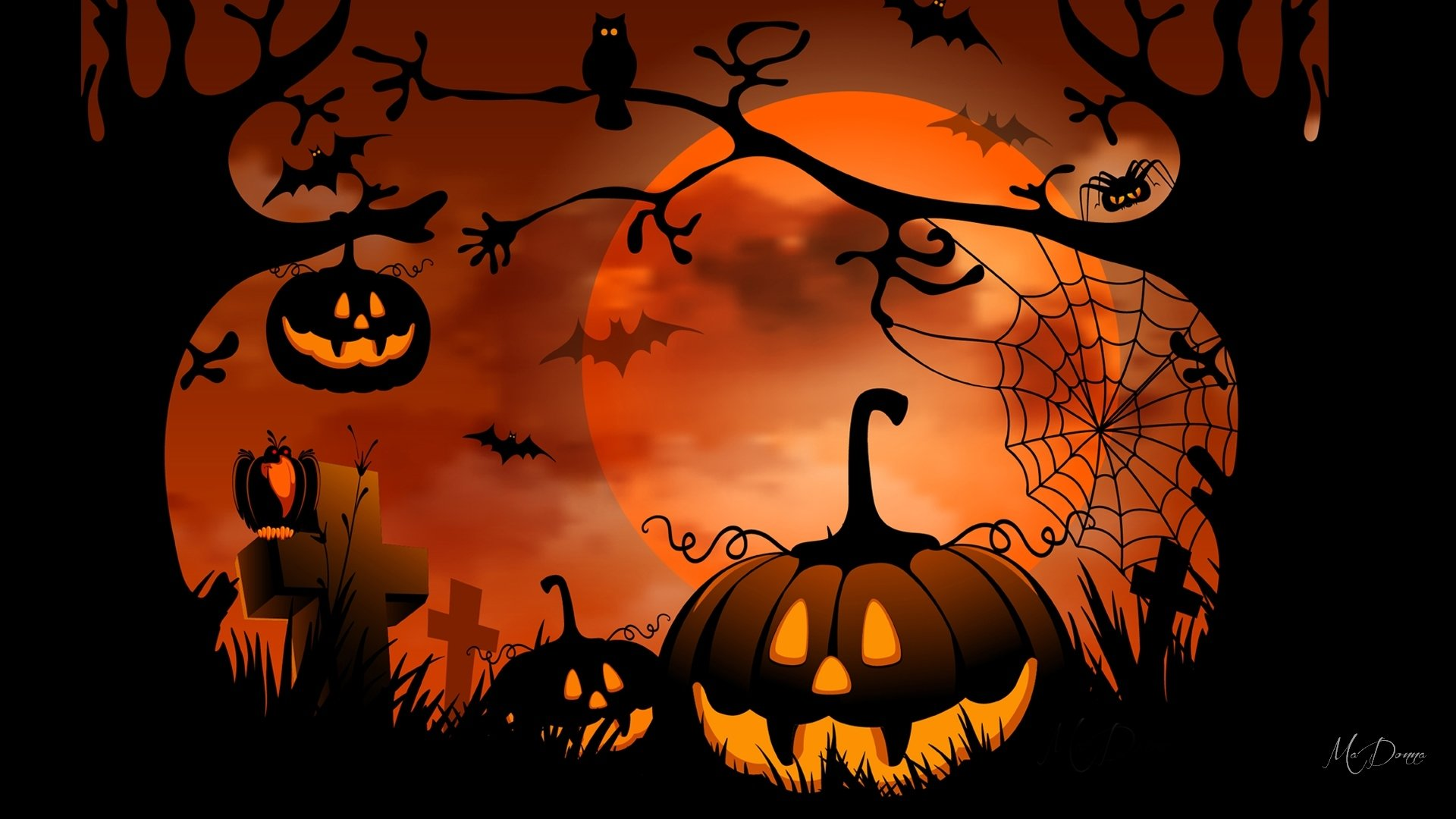 Free Download Halloween Jack O Lantern Wallpaper Stock Wallpapers