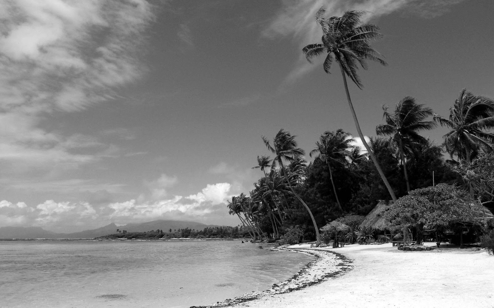 Black and White Wallpapers Black and White Beach Landscape HD 1600x1000