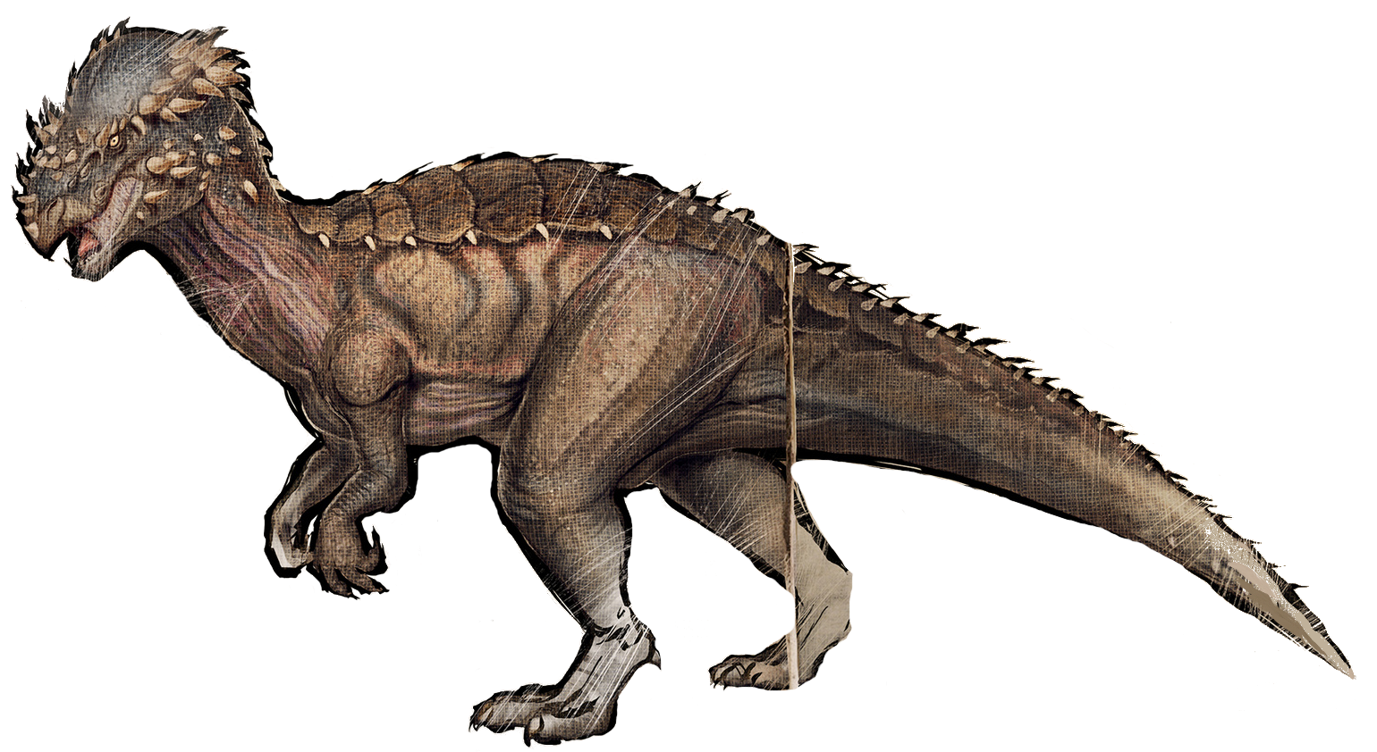 Pachycephalosaurus ark clipart images gallery for download 1540x842