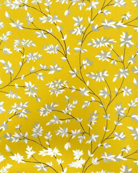 Nina campbell paradiso wallpaper wallpapersafari - Nina campbell paradiso wallpaper ...