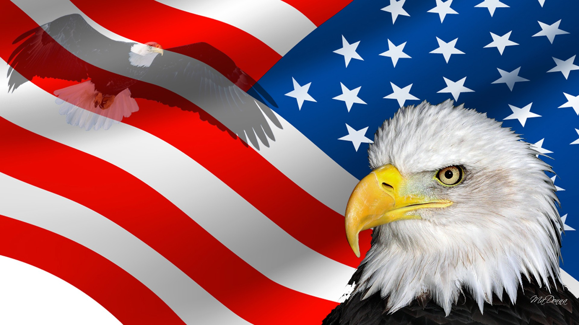 HD USA Wallpapers The Beauty Of Diversity In USA 1920x1080
