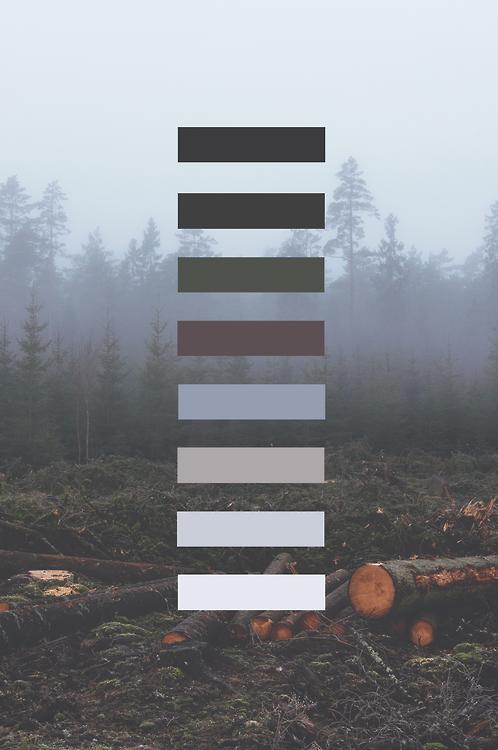 grunge palette Tumblr 498x750